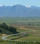 Riebeek-Kasteel-with-snow-capped-Witzenberg-Mountains-in-the-background.jpg